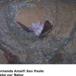 Fernanda Amalfi