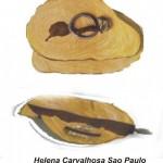 Helena Carvalhosa